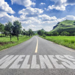 The Way to Wellness - Muscle Media