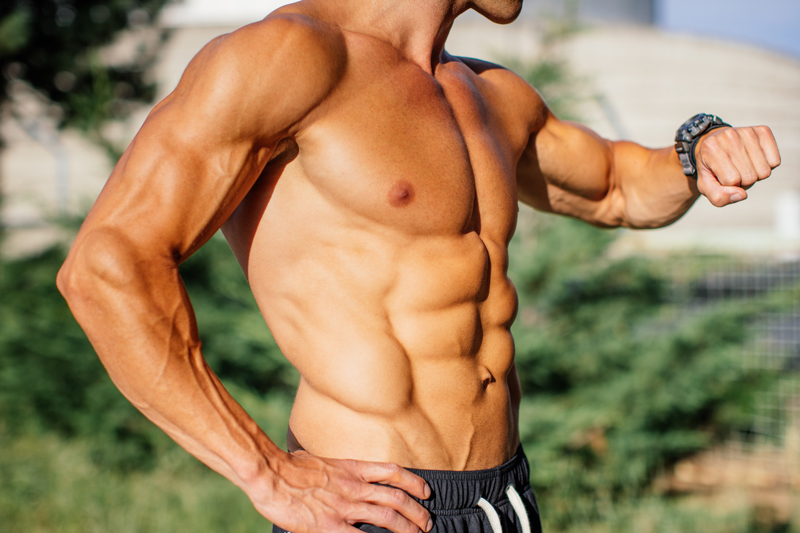 Build Muscle in No Time