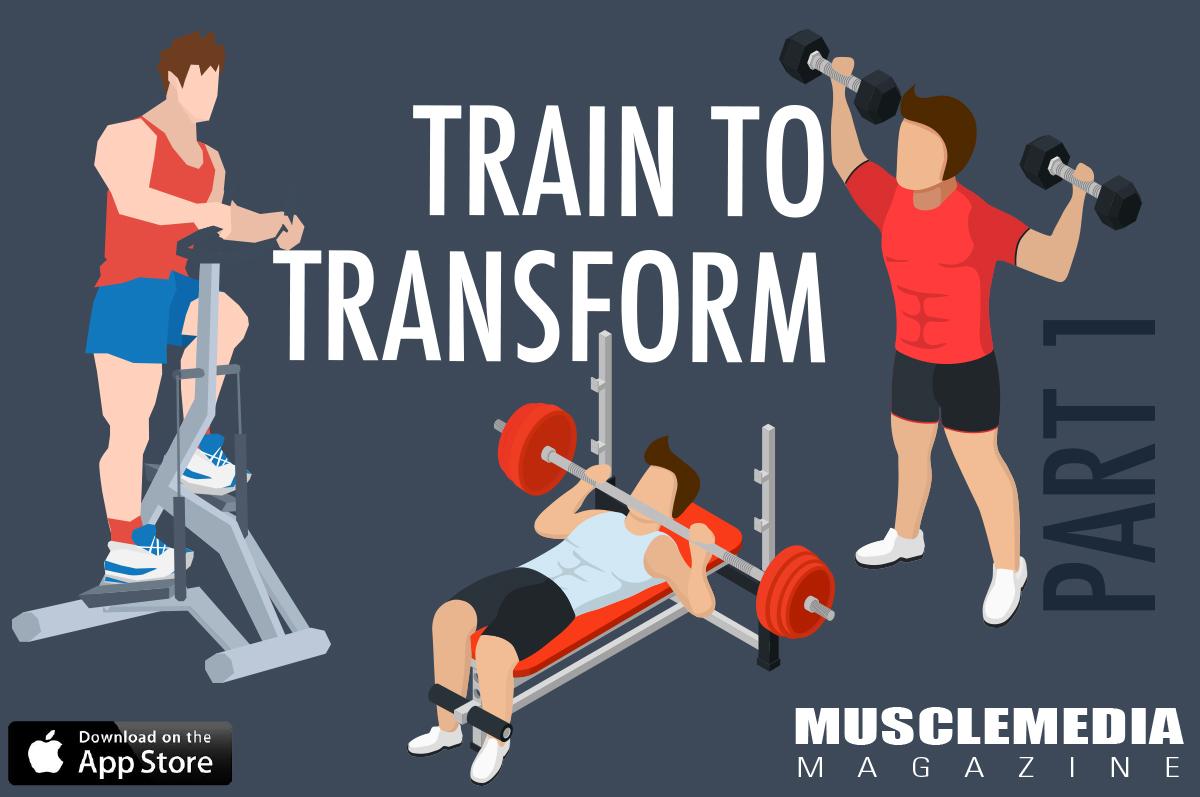 Train-to-Transform-Cover