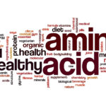 Amino Acid Therapy - Muscle Media