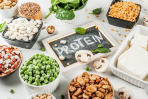choose vegetarian protein - Muscle media