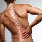 How-Physical-Therapy-for-Osteoporosis-Helps-Muscle-Media