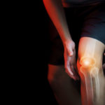 knee physical therapy Knee-Physical-Therapy-Muscle-Media
